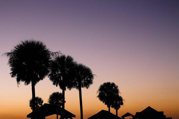 Florida Thursday-4